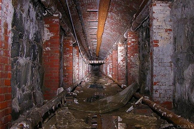asylum 28