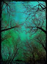 blue-sky-copy